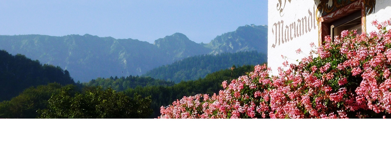 hoss1.jpg